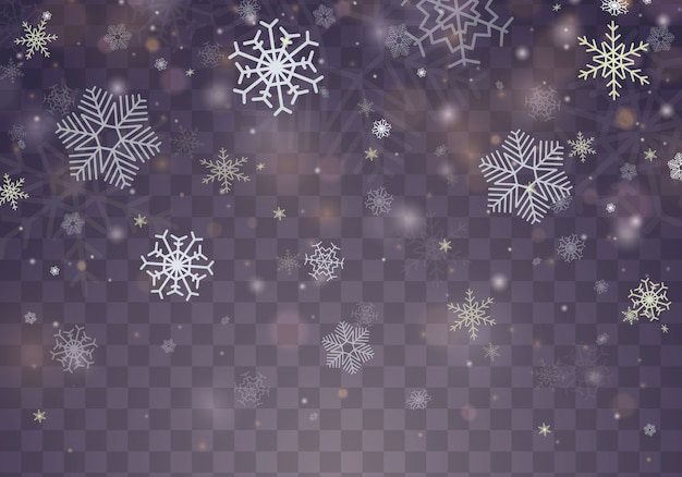 Effetto decorativo trasparente fiocco di neve.