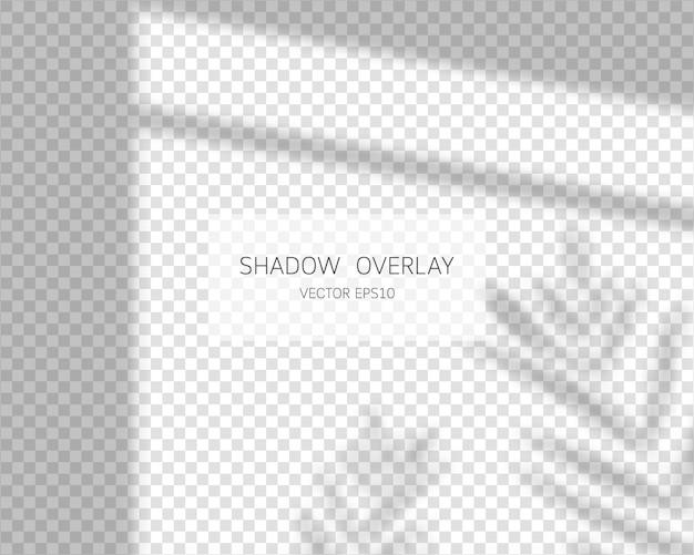Effetto di sovrapposizione dell'ombra. lascia le ombre. ombre naturali dall'illustrazione isolata finestra.