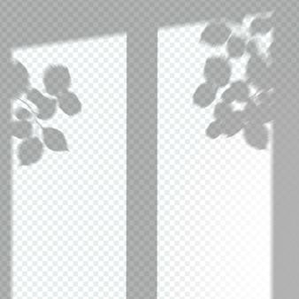 Effetto di sovrapposizione dell'ombra trasparente della finestra
