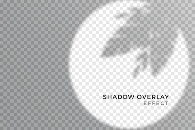 Effetto di sovrapposizione di stile ombre trasparenti