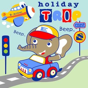 Elefante in auto, trasporto