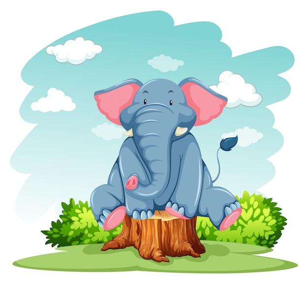 Elefante sopra il tronco