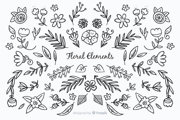 Elementi decorativi floreali disegnati a mano incolore