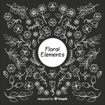 Elementi decorativi floreali incolori disegnati a mano