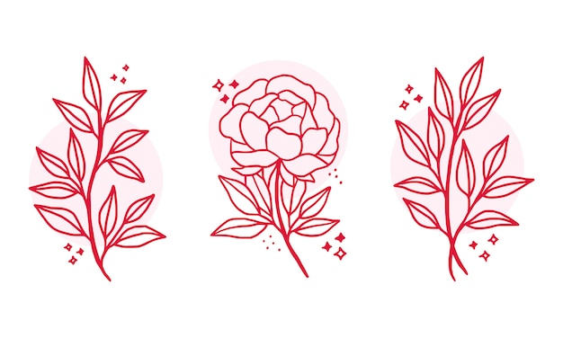 Elementi di logo fiore botanico rosa disegnati a mano