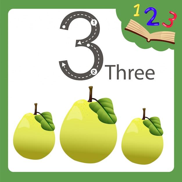 Elementi di mela cotogna tre numeri