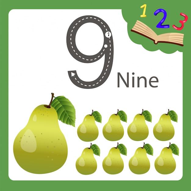Elementi di nove numeri pera