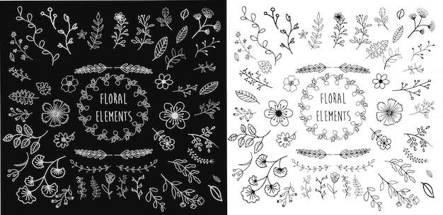 Elementi floreali disegnati a mano