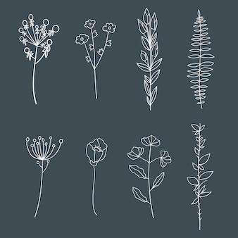 Elementi floreali eleganti vintage disegnati a mano.