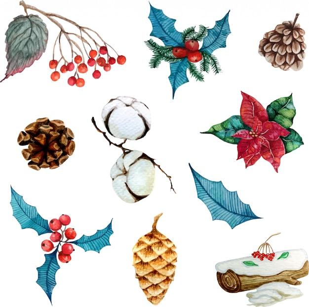 Elementi floreali invernali per design o adesivi