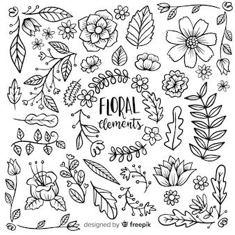 Elemento floreale collectio