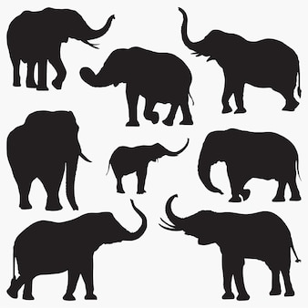 Elephant silhouettes2