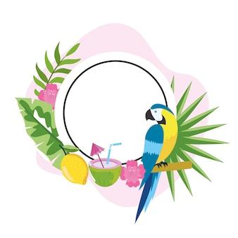 Emblema del cerchio con pappagallo e fiori tropicali