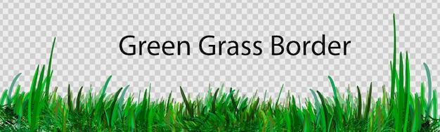 Erba verde che è longitudinale da utilizzare come elemento di design isolato da uno sfondo trasparente.
