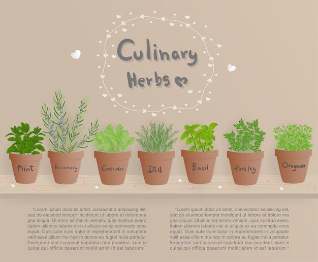 Erbe culinarie di design piatto sul vaso marrone