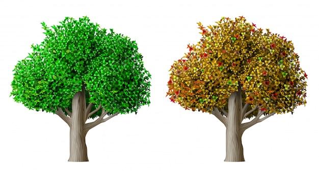 Estate ed autunno realistici dell'albero di vettore