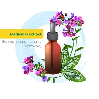 Estratto medico di pulmonaria officinalis