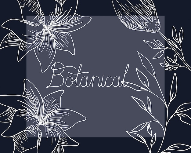 Etichetta botanica con icona isolato di piante