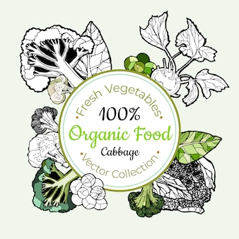 Etichetta d'annata delle drogherie delle verdure dei cavoli broccoli
