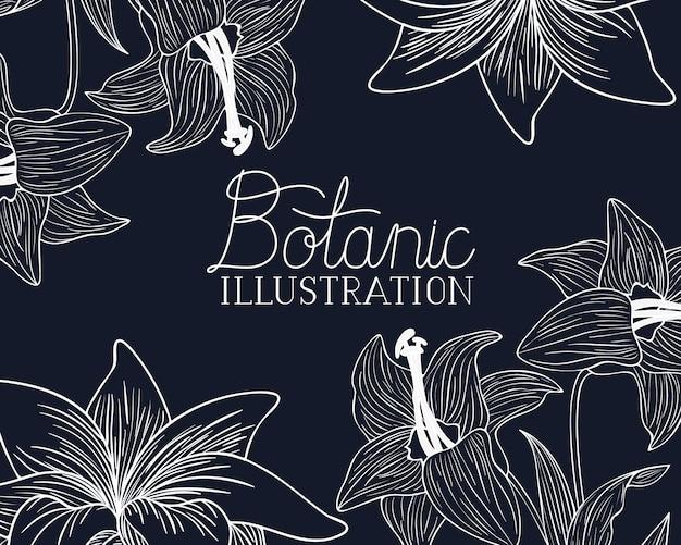 Etichetta di illustrazione botanica con piante
