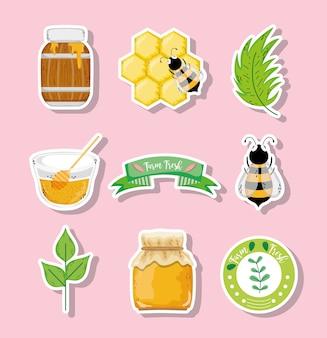 Etichetta di miele biologico