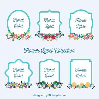 Etichette floreali carine con cornici blu