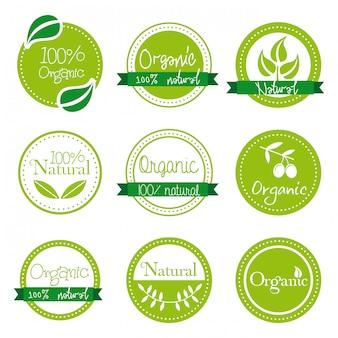 Etichette organiche sopra illustrazione vettoriale sfondo bianco