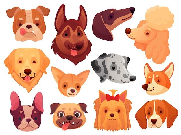 Faccia di cane carino cuccioli di animali domestici, cani di razza e cuccioli set di teste