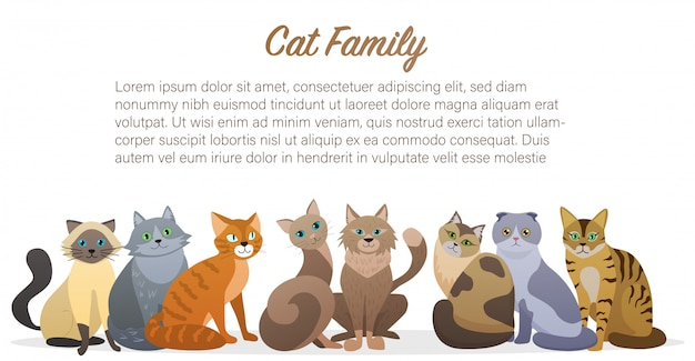 Famiglia di gatti sveglia del fumetto che sta insieme vista frontale. amico animale domestico gatto.