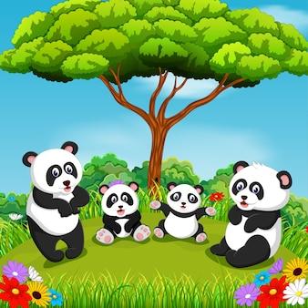 Famiglia di panda con un bellissimo scenario