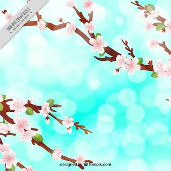 Fantastico sfondo con fiori di ciliegio e forme lucide