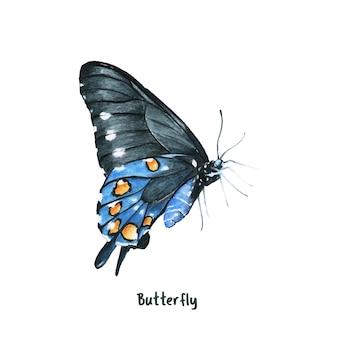 Farfalla disegnata a mano isolato su sfondo bianco