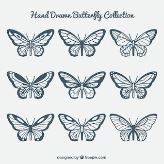 Farfalle disegnati a mano con varietà di disegni
