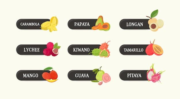 Fascio di etichette con deliziosi frutti tropicali esotici succosi freschi deliziosi dolci e loro nomi insieme delle etichette con l'alimento vegetariano crudo crudo saporito del dessert isolato su fondo bianco. illustrazione di colorul.
