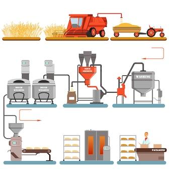 Fasi del processo di produzione del pane dalla raccolta del grano al pane appena sfornato illustrazioni su uno sfondo bianco