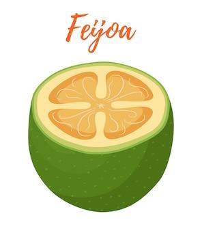 Feijoa, fetta di frutta tropicale