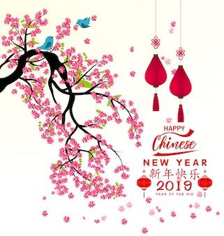 Felice anno nuovo chienese 2019, anno del maiale.