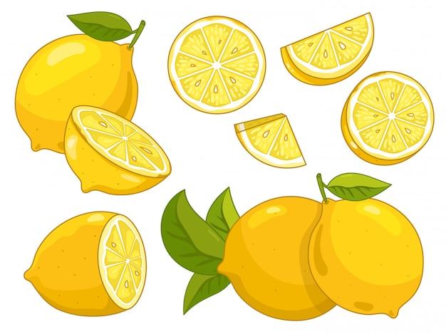 Fetta del limone dell'agrume isolata su fondo bianco.