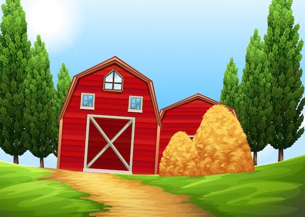 Fienili e pagliaio nei terreni agricoli