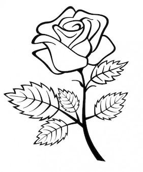 Fiore di rosa con ramo e foglie