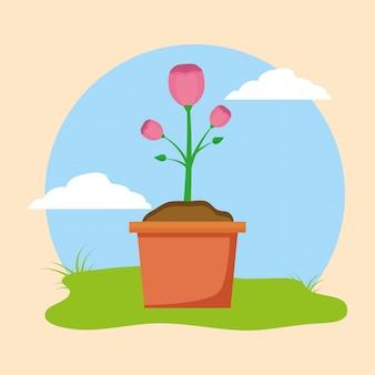 Fiore in vaso
