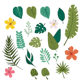 Fiore tropicale e elemento foglia tropicale