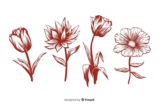 Fiori disegnati a mano realistici con steli e foglie nei colori rossi