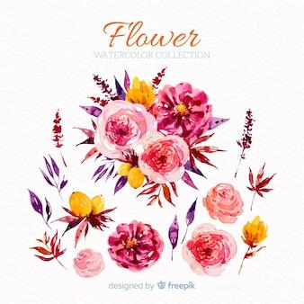 Fiori e foglie collectio