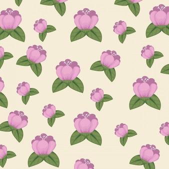 Fiori svegli con il fondo delle foglie e dei petali