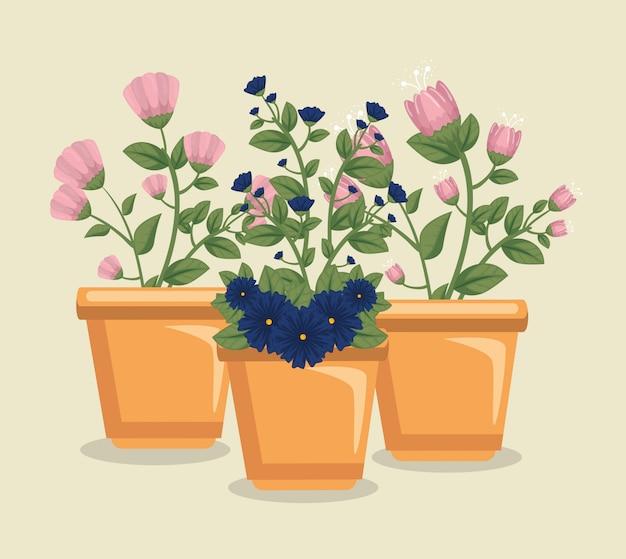 Fiori svegli con le foglie dentro il vaso