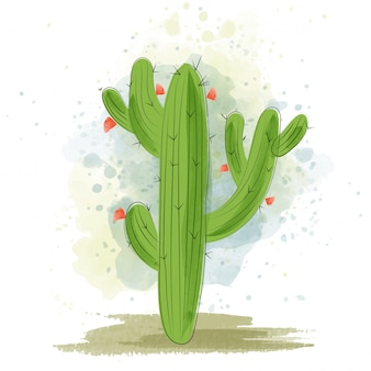 Fioritura ad acquerello di cactus