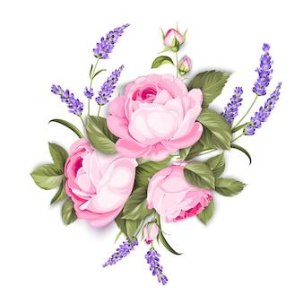 Fioritura rosa su sfondo bianco