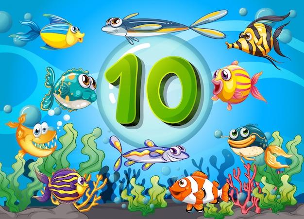 Flashcard numero dieci con 10 pesci sott'acqua