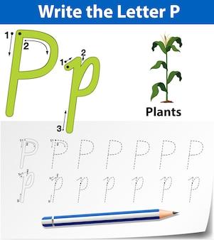 Fogli di alfabeto dell'alfabeto di tracciamento della lettera p.